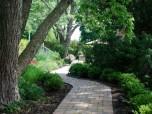 The B. Robertson Backyard